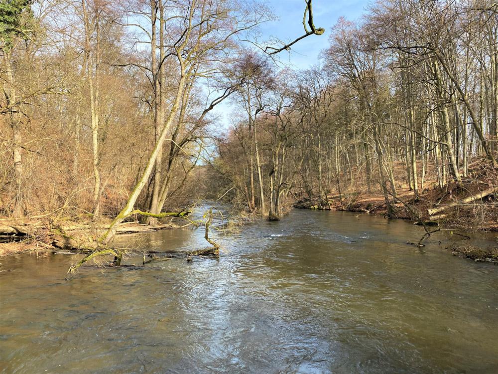 Der Fluss Warnow