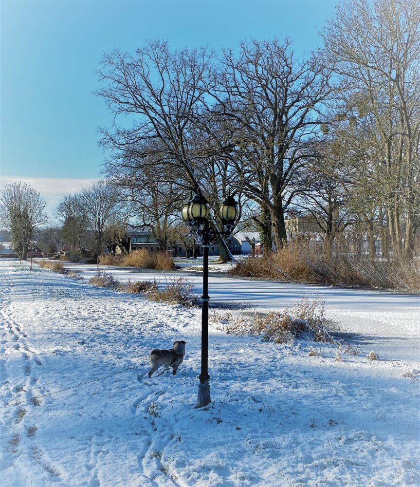 Schlosspark Remplin