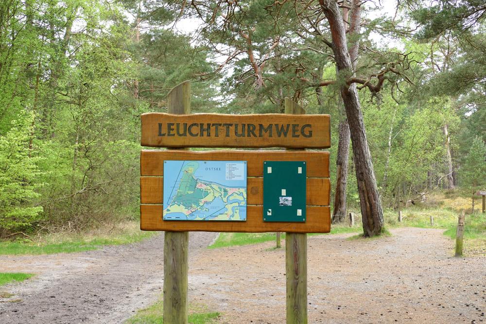 Leuchtturmweg Darßwald