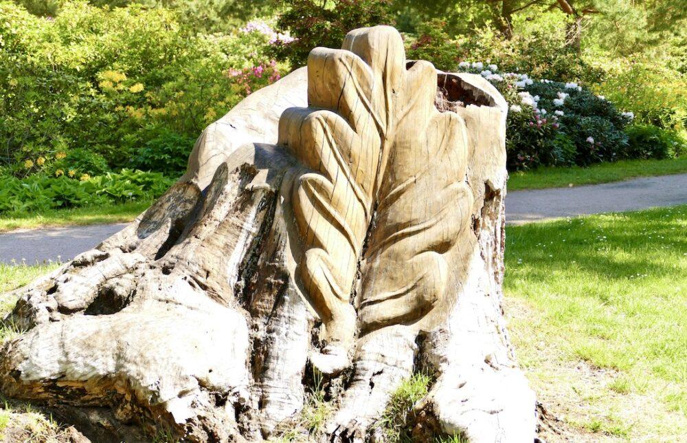 Holzkunst im Rhododendronpark Graal-Müritz