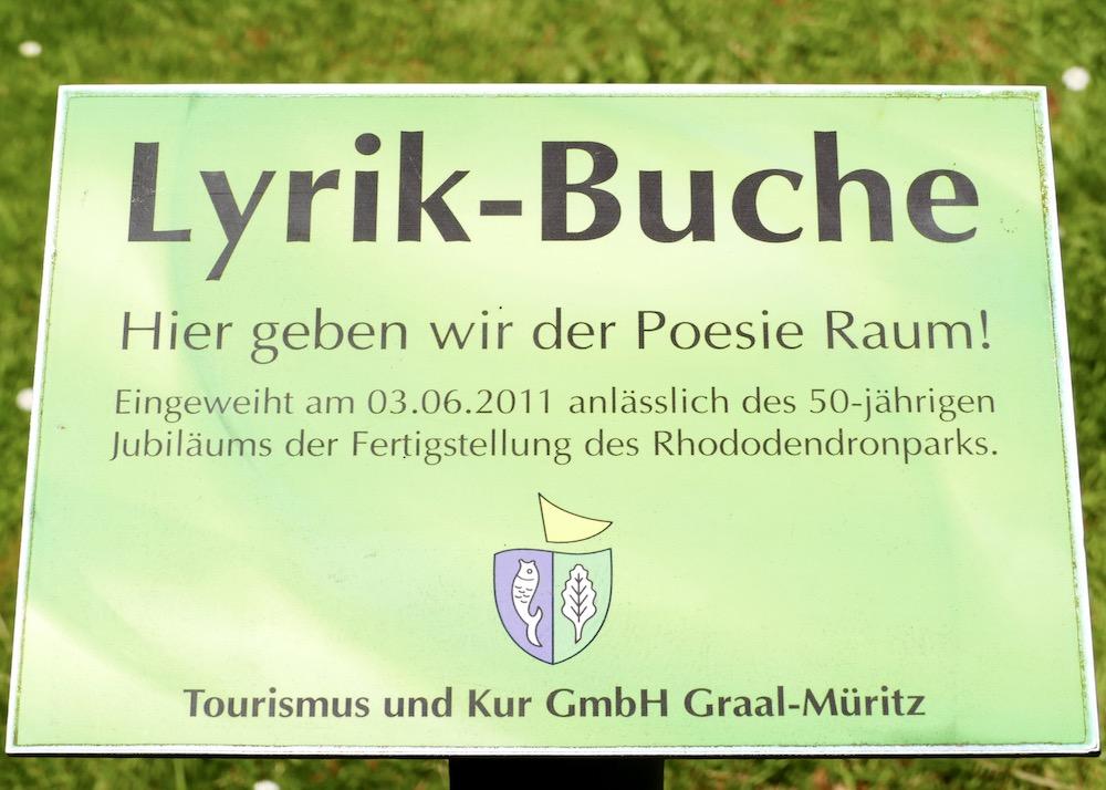 Lyrik-Buche im Rhododendronpark