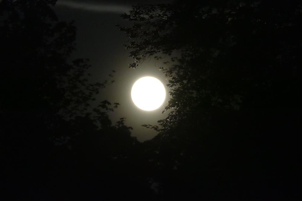 Mond über Alt Diekhof